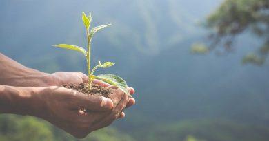 Ekologiczne gry planszowe – kilka ciekawych propozycji